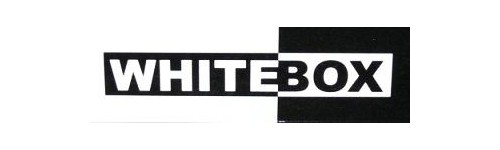 Whitebox modellautók